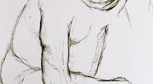 Anatomie 2012 – 012