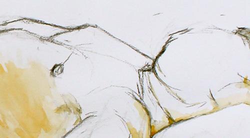 Anatomie 2012 – 014